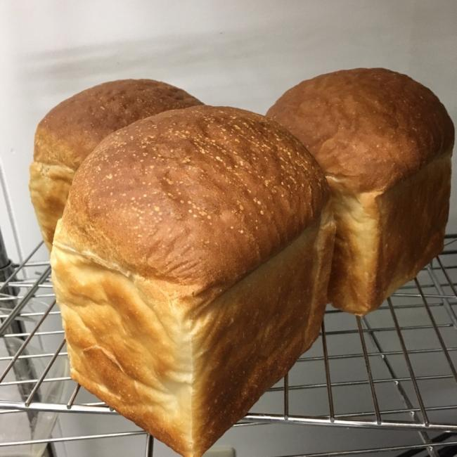 人気の食パン焼けてます♬